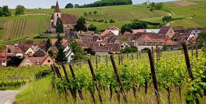 Et si vous partiez en week-end à la découverte des vins ?